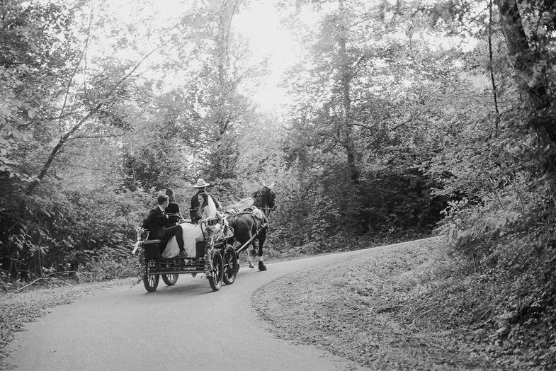 Mladoporočenca med prevažanjem s poročno kočijo.