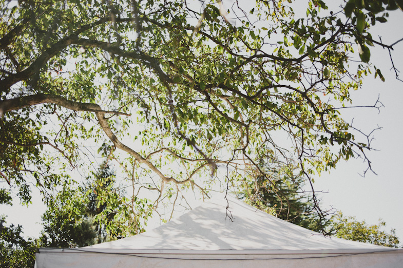 White wedding tent suitable for outdoor wedding.