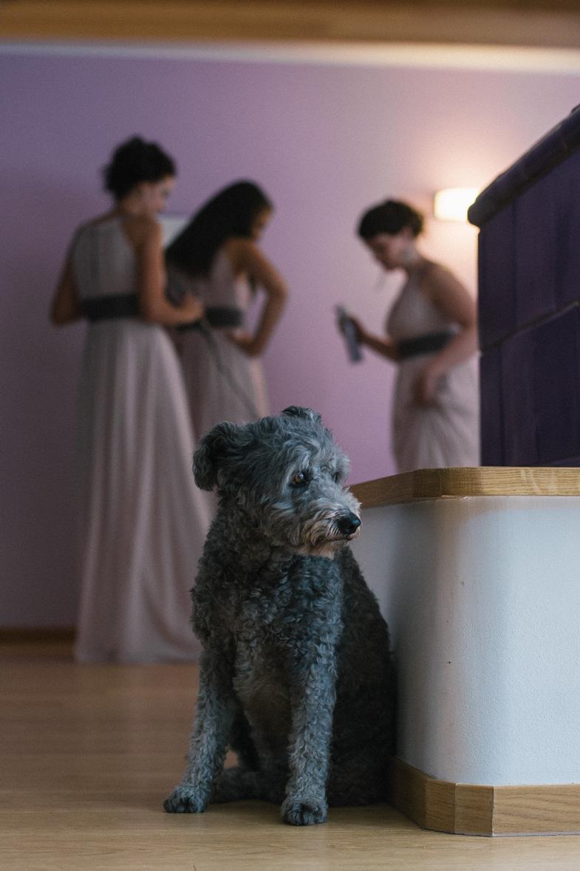 Priprave družic na poroko.